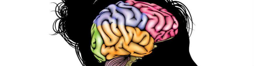 ¿Cuál es el mayor obstáculo para el cerebro de un estudiante?