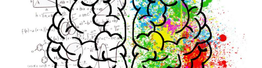 ¿Cómo funciona el cerebro adolescente para estudiar?