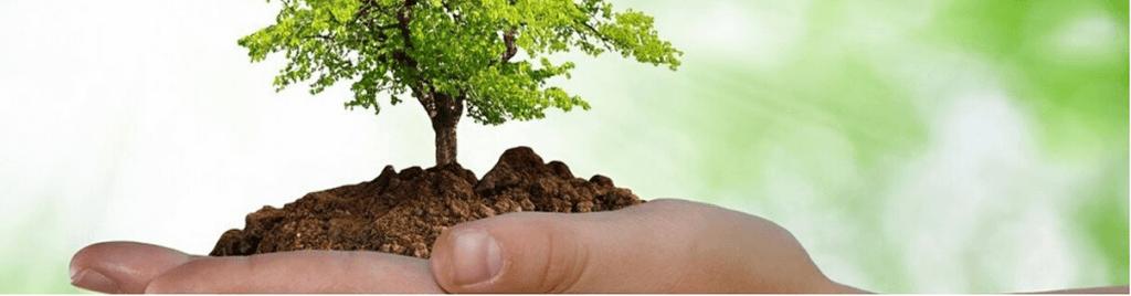 Cambio climático: una oportunidad para la ingeniería ambiental